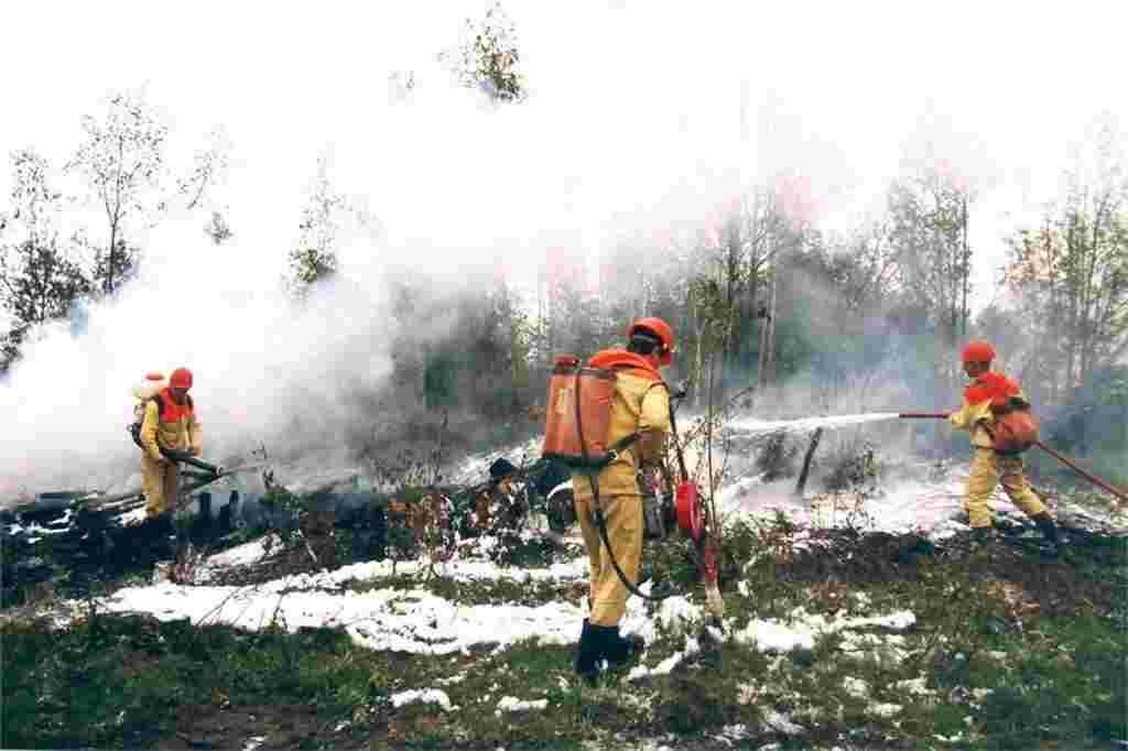 Incendio Siberia estate 2019