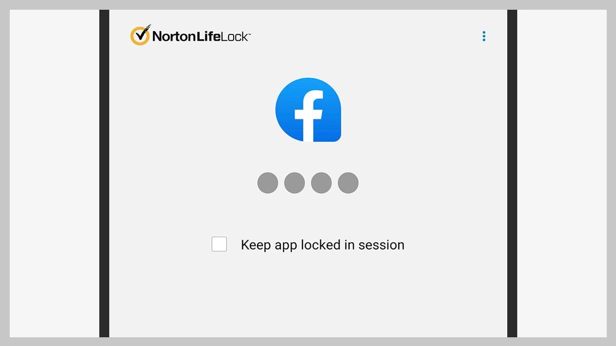 password norton