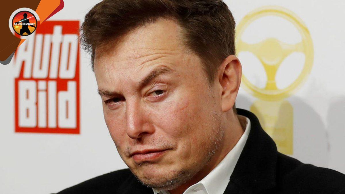 Elon Musk: L'allenatore di MMA John Kavanagh si offre per aiutare l ...