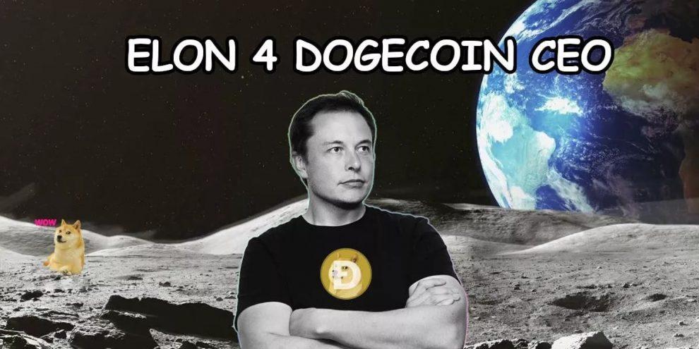 Elon Musk Dogecoin