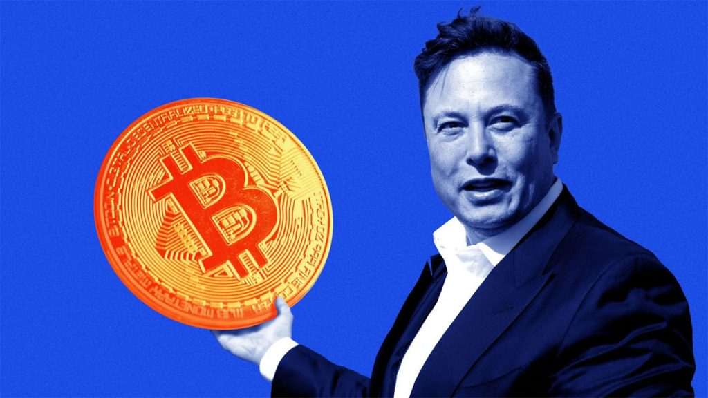 Elon Musk Twitter Truffa Bitcoin Criptovalute
