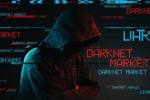 darknet pedofili titolo