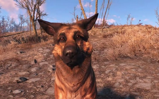 Fallout 4 dogmeat immagine