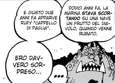 One Piece 1017